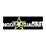 Logo ngôi sao gia định png 150x150