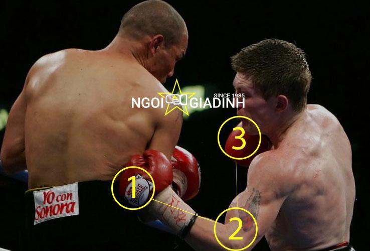 Hướng dẫn cú đấm móc uppercut boxing