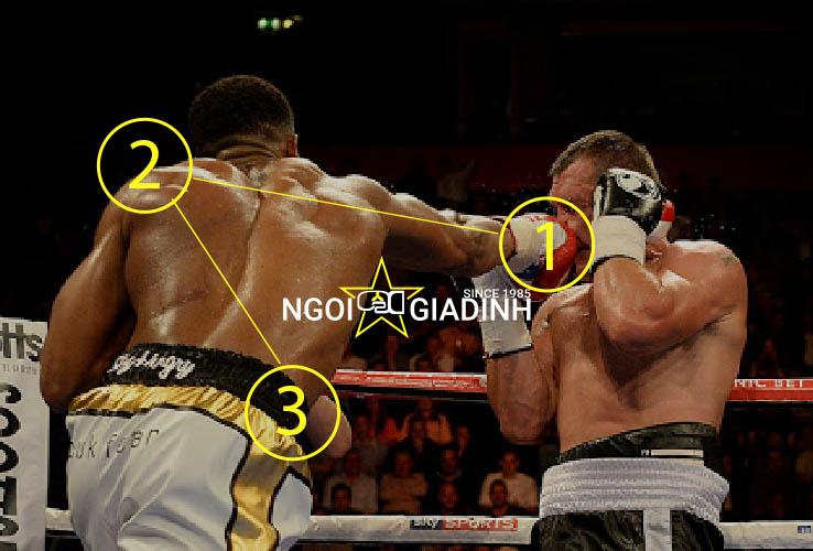 Hướng dẫn cú đấm thẳng tay sau Straight boxing