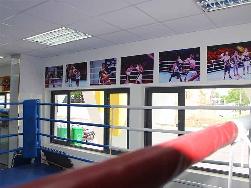 Học boxing có đắt không