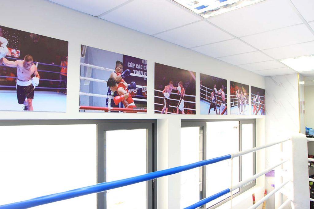 Địa điểm học boxing