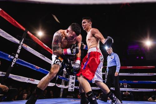 Ảnh boxing đẹp chất miễn phí