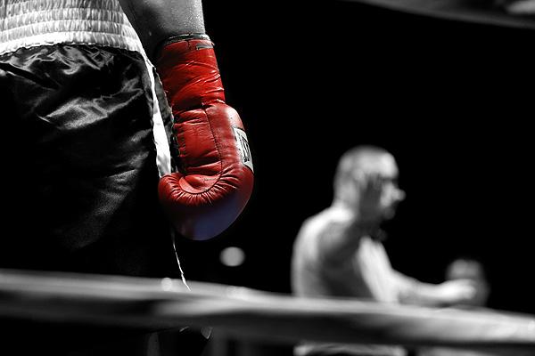Ảnh boxing đẹp