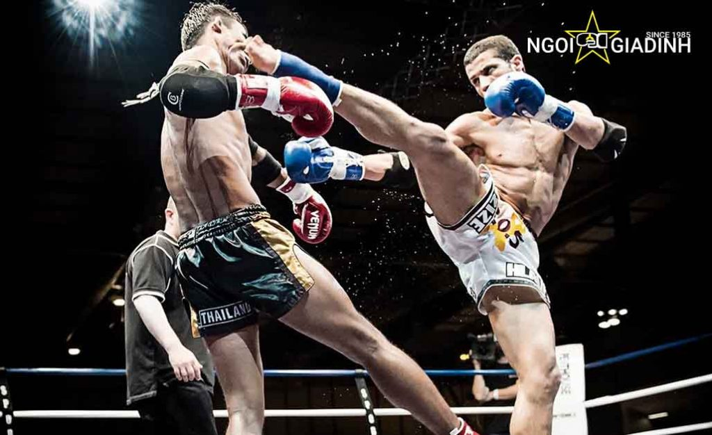 Điểm khác biệt kickboxing và muay thái