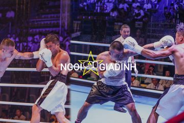 Giải boxing HBF là gì?