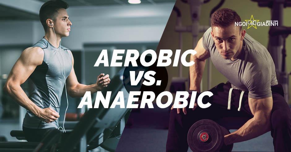 Aerobic và Anaerobic là gì