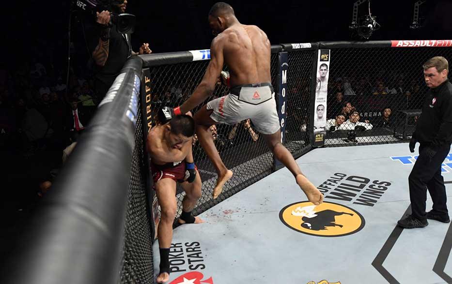 MMA là gì ảnh 2