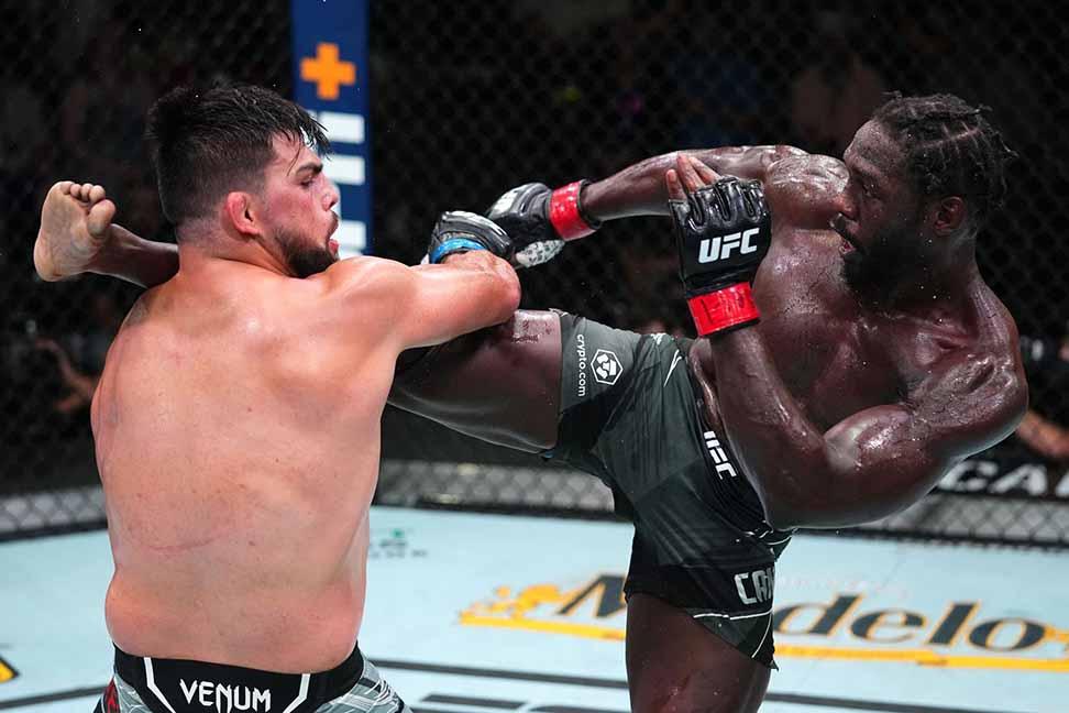 MMA là gì ảnh 3