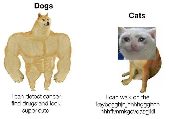 Swole Doge vs Cheems