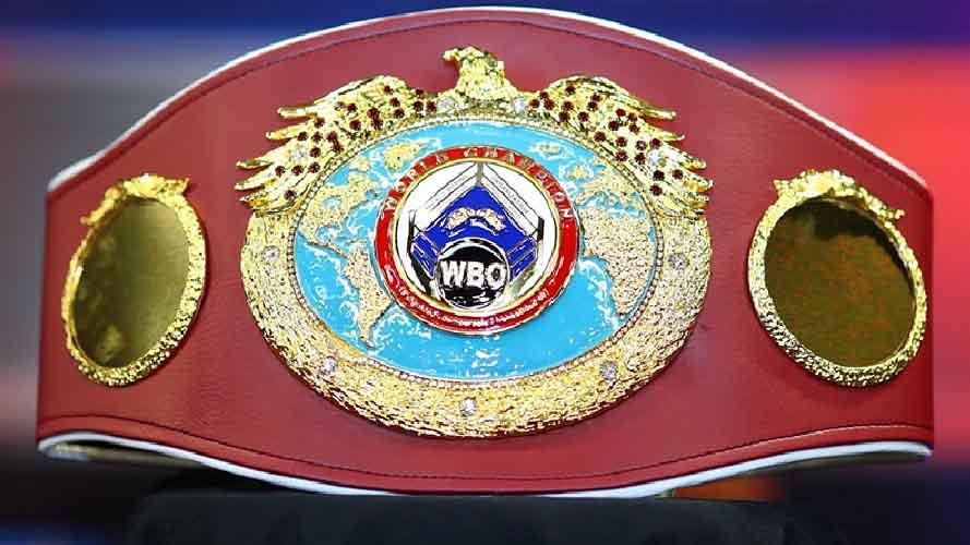 Đai WBO là gì